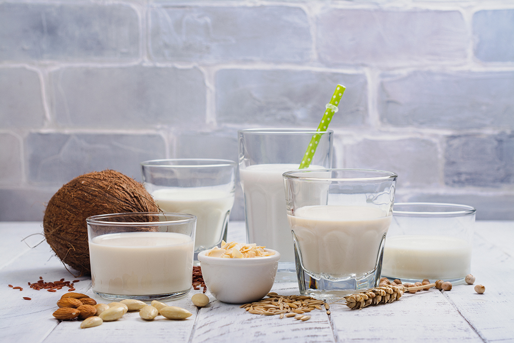 leches no lácteas sustitutas de la leche de vaca